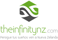 Theinfitinitynz.com